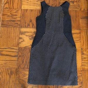 Banana republic 12 navy and white polka dot dress